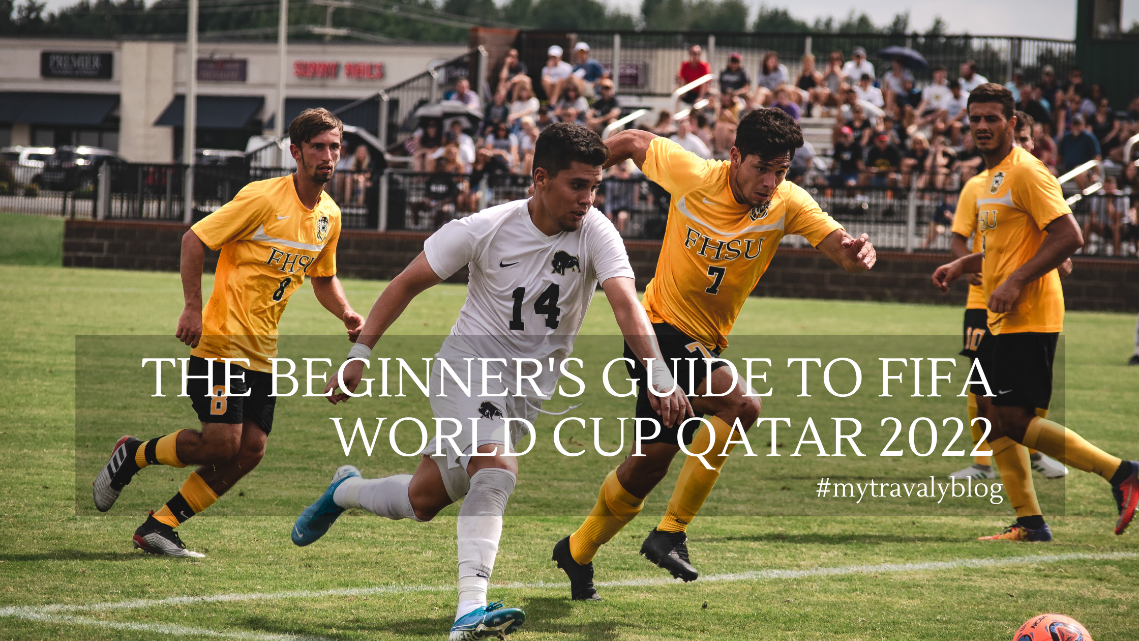 The beginner's guide to FIFA world cup Qatar 2022